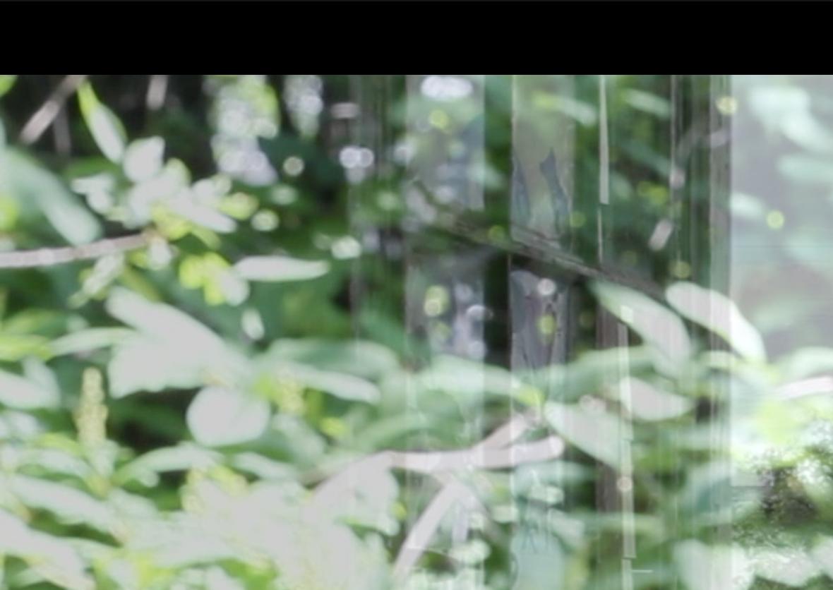 Screen Shot 2020-07-21 at 9.57.35 PM